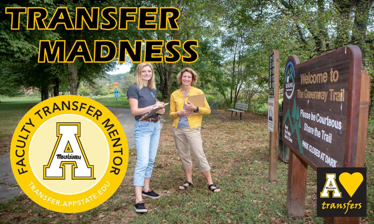 Faculty Transfer Mentor Training Image